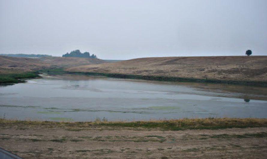 В Шемуршинском районе Чувашии отремонтируют плотину