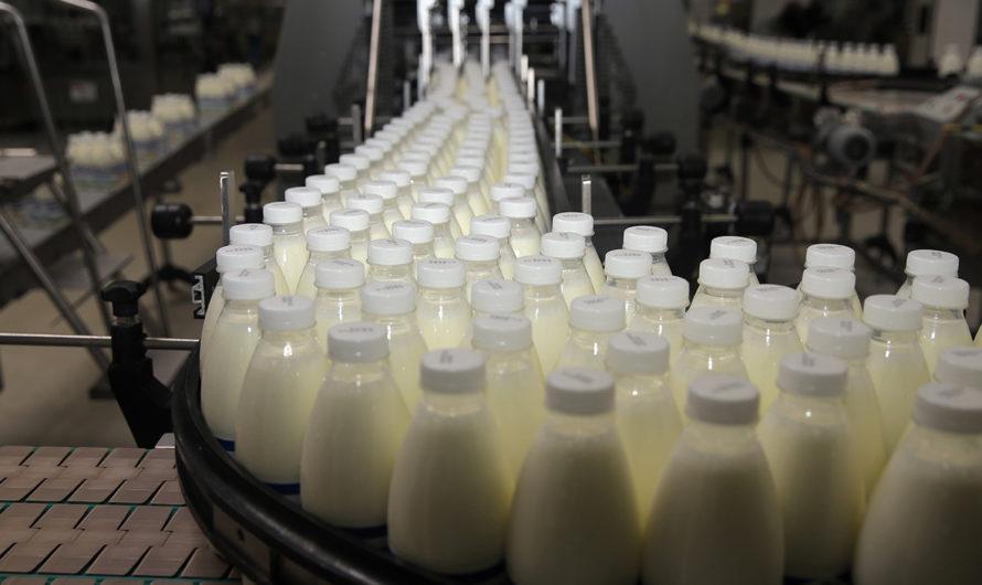 Чувашия вошла в топ-30 регионов-лидеров России в производстве молока в СХО