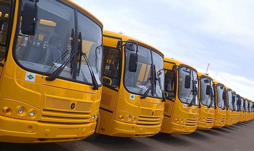 С 9 по 11 мая межмуниципальные автобусы будут ездить чаще