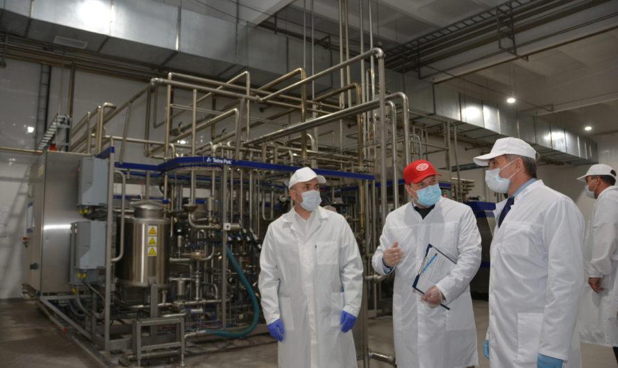 Олег Николаев поручил разработать механизм поддержки личных подсобных молочных хозяйств