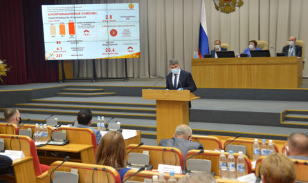 Олег Николаев выступает в Госсовете Чуваши