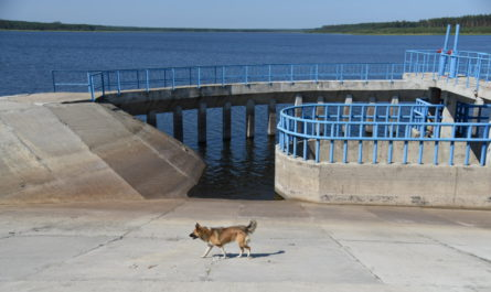 В Шемуршинский район придет питьевая вода