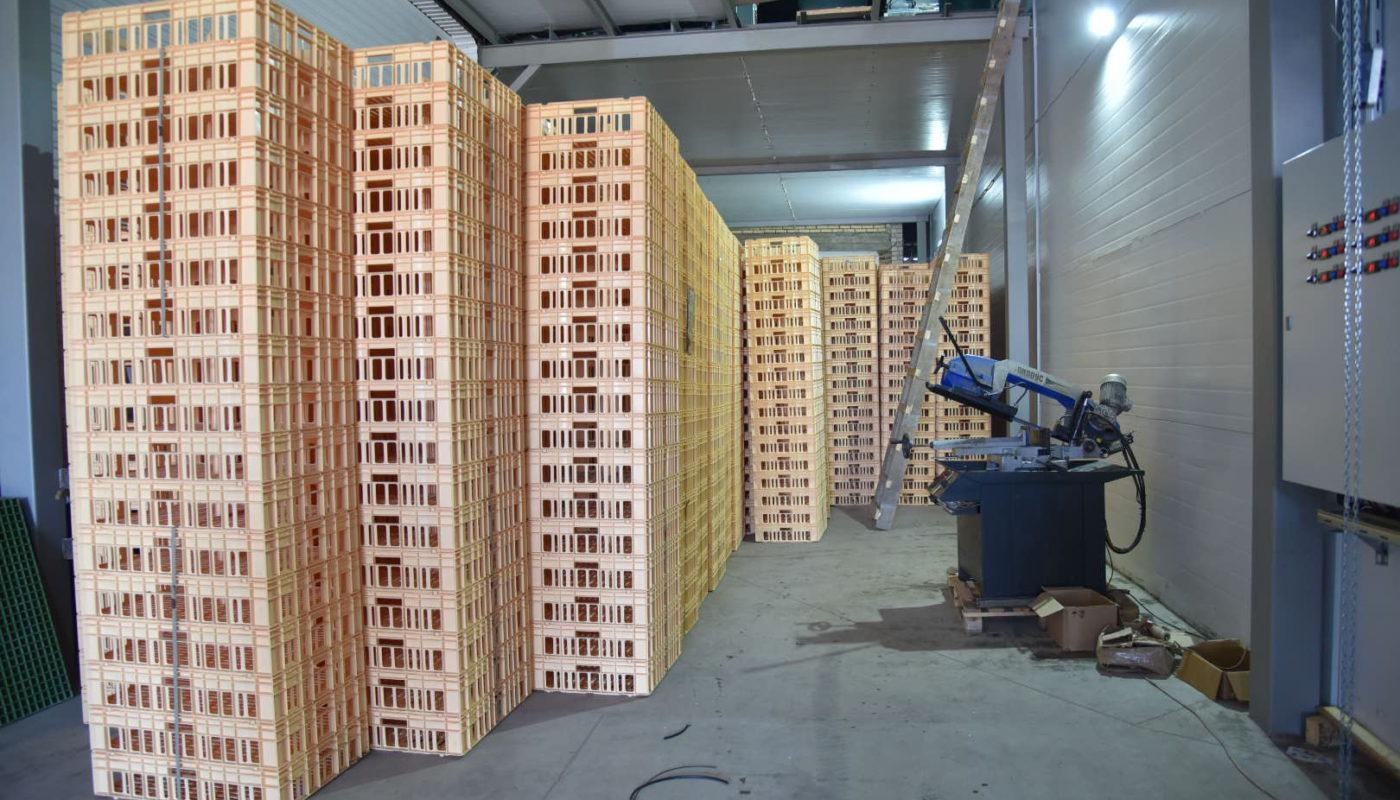 В чувашском селе Новое Чурашево откроют производство сыра в промышленных масштабах