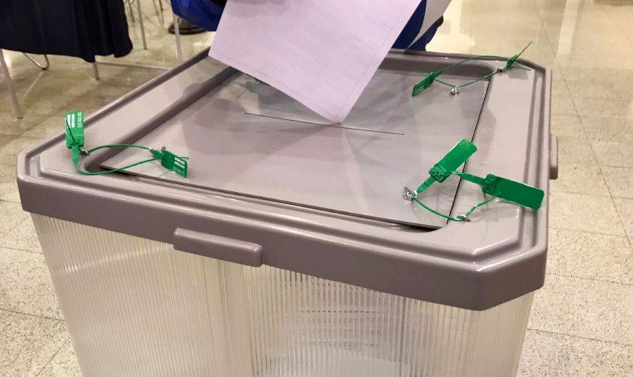 После обработки 8% бюллетеней Олег Николаев набирает больше 83,64% голосов