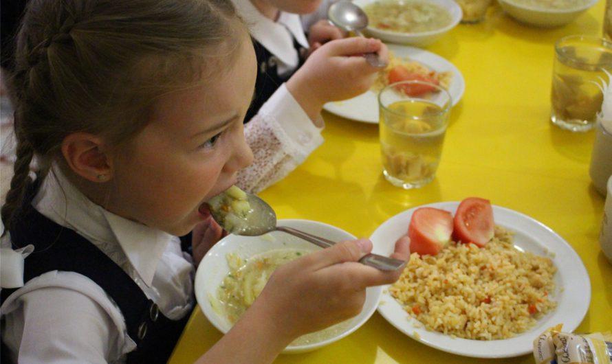 Роспотребнадзор региона отметил хороший уровень обеспечения горячим питанием школьников Чувашии