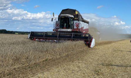 В Чувашии собрали рекордный урожай
