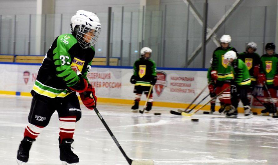 Одна из двух российских детских следж-хоккейных команд сформирована в Чувашии