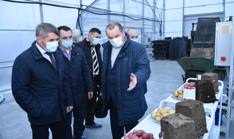 Глава Чувашии объявил о выделении дополнительных средств на поддержку переработки сельхозпродукции