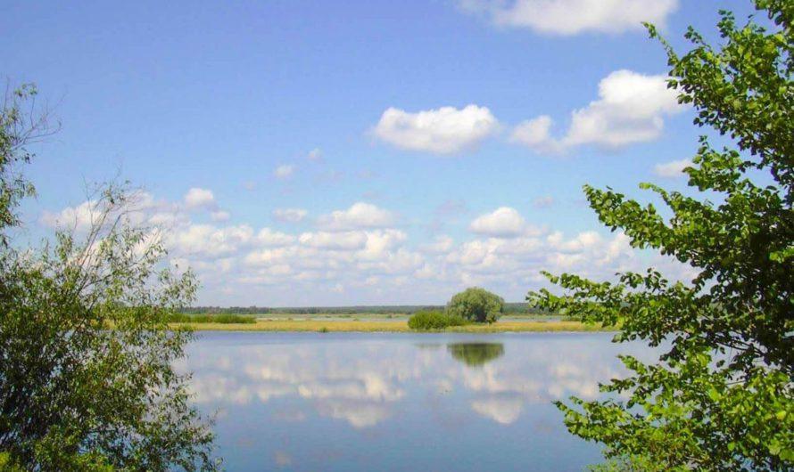 Чувашия вновь на первом месте в экологическом рейтинге регионов по ПФО