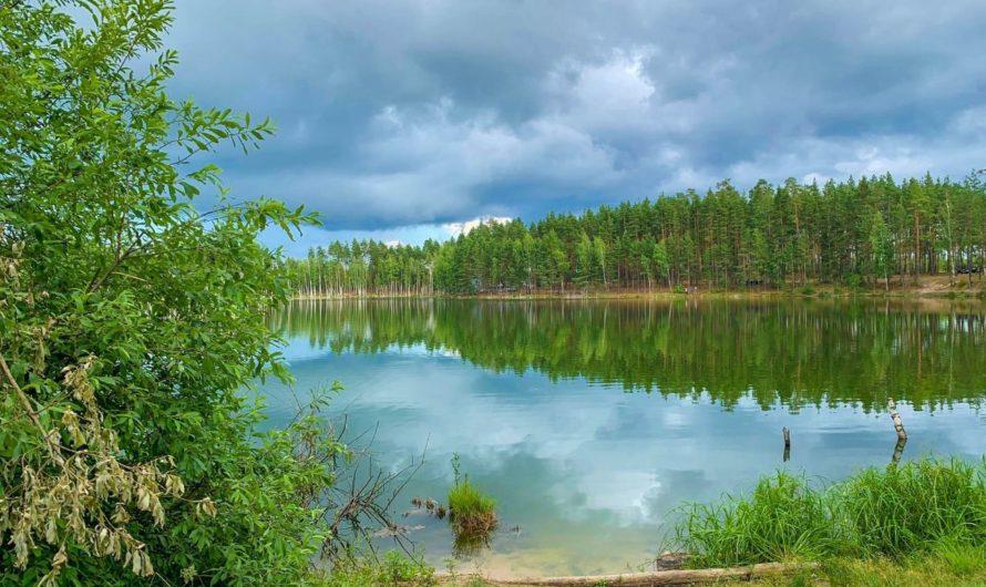 На форуме «Зеленая Чувашия» обсудят развитие экологического волонтерства в регионе