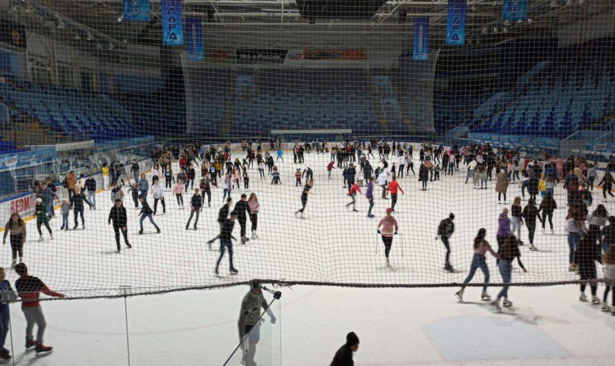 31 января можно будет бесплатно сходить на выставки, покататься на коньках и поплавать