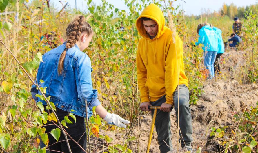В  Чувашии  создан республиканский экологический волонтерский отряд