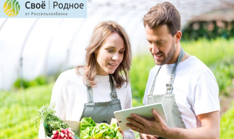 Чувашская Республика вошла в ТОП-10 регионов России по использованию цифровой платформы «Своё Родное»