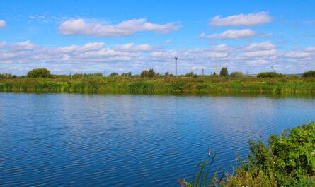 река, экология