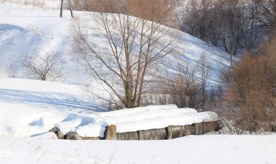 Безопасное прохождение паводка находится на контроле Главы Чувашии
