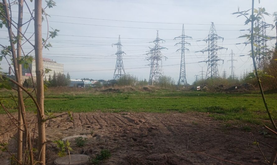 В Чувашии разрабатывают стратегию энергетического развития