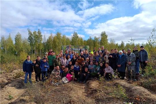 В Заволжье прошла экологическая акция «Посади лес»